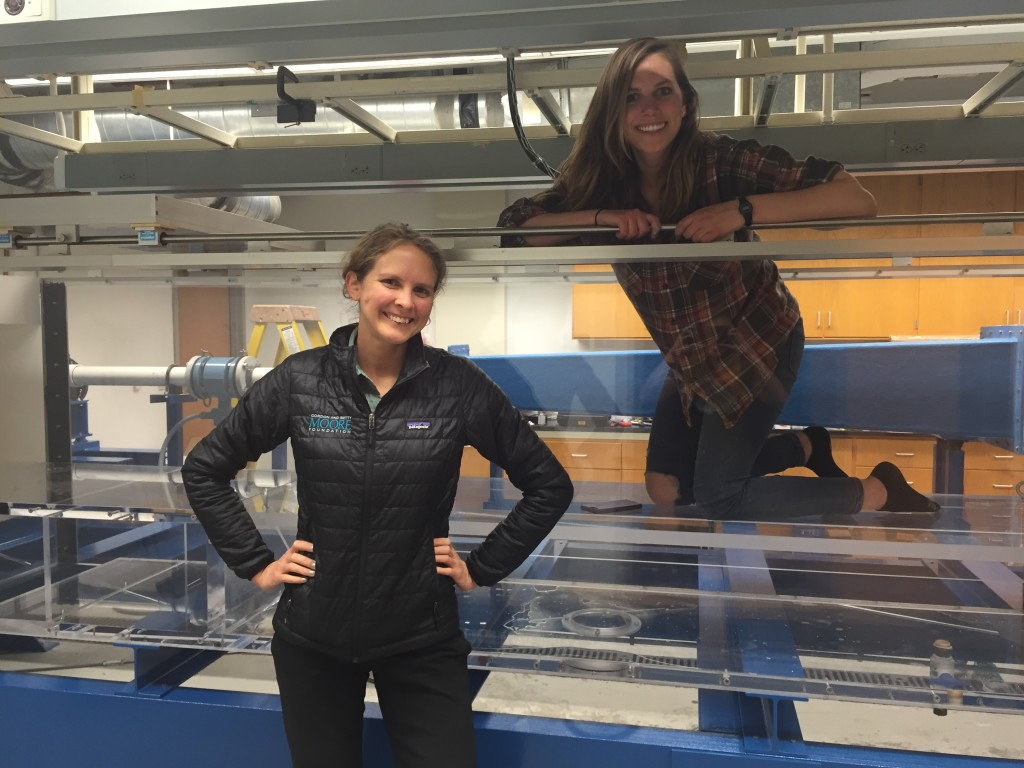 Dr. Larsen and Aaron Hurst by (and in) the newly installed Ecogeomorphology flume