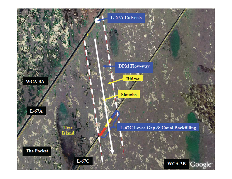 Depiction of the planned flow release experiment in the Everglades. For decades, the region separated by the two levees depicted has been isolated from flow. An experimental flow release will evaluate the extent to which flow mobilizes sediment and its impacts on landscape and ecosystem processes. Photo credit: DPM Science Team.