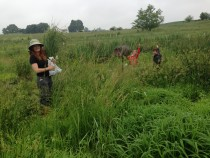 Danielle Watts, Kayla Schulte, and Aaron Blair collect clip plots at Big Spring Run